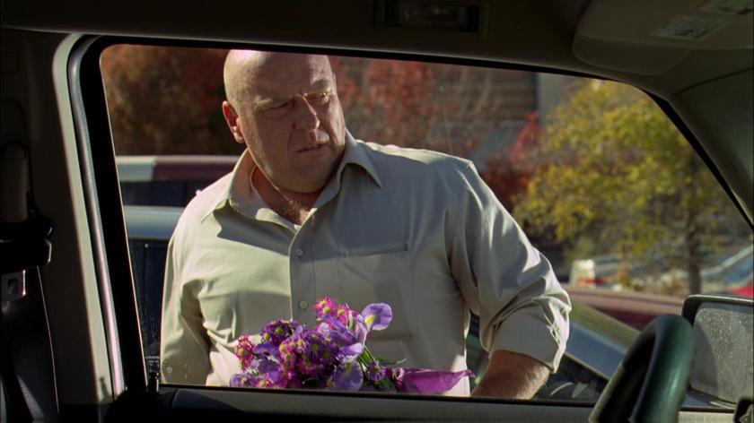 hank purple flowers 3-7